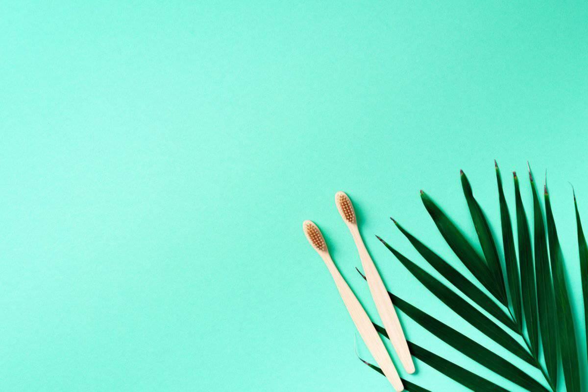 Los mejores cepillos de dientes de bambú 2020