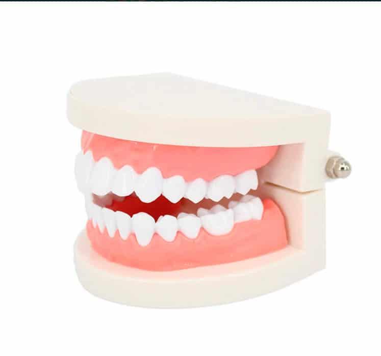 enseñar a cepillarse los dientes