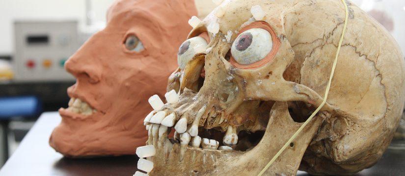 Odontología Forense: El Dentista Como Investigador